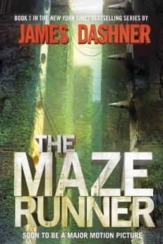 maze cover full